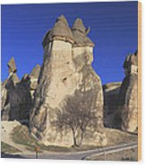 Pasabag Goreme National Park Cappadocia Turkey Wood Print