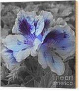 Pasion Blue Wood Print