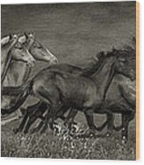 Paso Peruvian Horses On The Run Wood Print
