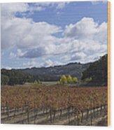 Paso Robles Autumn Wood Print