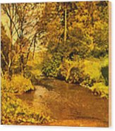 Passage Down The River Wood Print