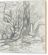 Passageway At Elephant Rocks Wood Print