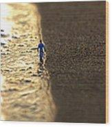 Passeggiata Al Tramonto Wood Print