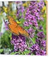 Passion Butterfly Wood Print