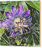 Passion Fruit Flower Wood Print