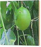 Passion Fruit Wood Print