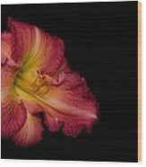 Passionate Lily 20 Wood Print