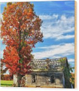 Past Its Prime I - A Barn In The Fall Wood Print