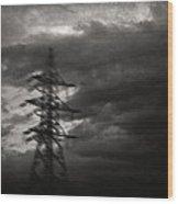 Past Wood Print by Taylan Apukovska
