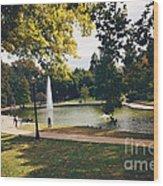 Past Time At Mirror Lake Wood Print
