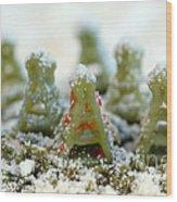 Pasta Christmas Trees Wood Print