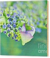 Pastel Buds Wood Print