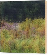 Pastel Field Wood Print