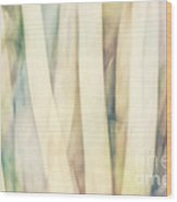 Pastel Forest Wild Grasses Photographic Abstract Wood Print