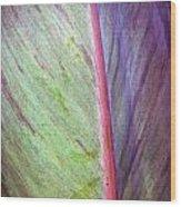 Pastel Leaf Detail Wood Print