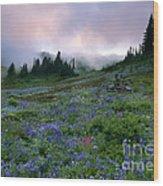 Pastel Mountain Dawn Wood Print