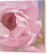 Pastel Pink Petals And Paint Wood Print