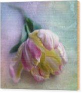 Pastel Poem Wood Print