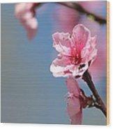 Pastel Spring Wood Print