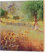 Pastelero Spain Wood Print