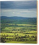Pastoral Fields, Near Clonea, County Wood Print