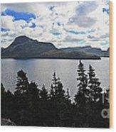 Pastoral Scene By The Ocean Panorama Wood Print