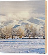 Pasture Land Covered In Snow With Taos Wood Print