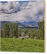 Pastures And Clouds  Wood Print