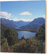 Patagonia Wood Print