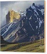 Patagonia Magical Space Wood Print