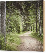Path In Green Forest Wood Print by Elena Elisseeva