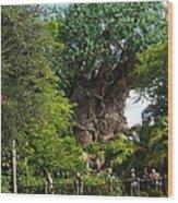 Path Leading To Tree Of Life Wood Print