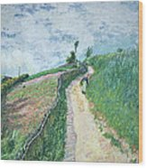 Path Leading To Ville D'avray Wood Print