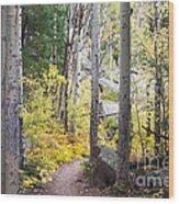 Path Of Peace Wood Print