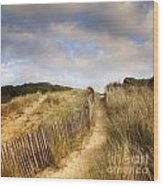 Path Through Dunes Wood Print by Colin and Linda McKie