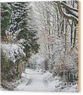 Path Through The Snow Wood Print