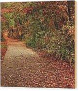 Path Thru The Woods Wood Print