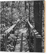 Path To  Wood Print