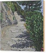 Path To L'eremo Sul Mare Wood Print