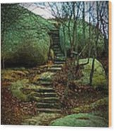 Path To Munchkinville Wood Print by Marcia Lee Jones