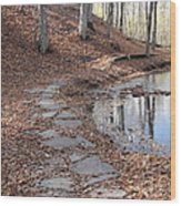 Path To Somewhere Wood Print