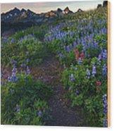 Path To Tatoosh Wood Print
