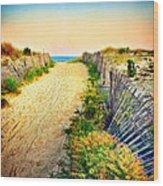 Path To The Beach Wood Print