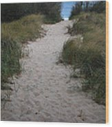 Path To The Dunes Wood Print