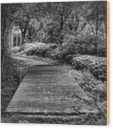 Path To The Forest Wood Print