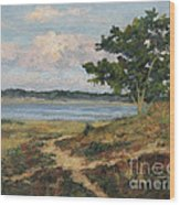 Path To The Harbor Wood Print