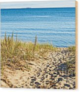 Path To The Lake Superior Beach Wood Print