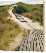 Path To The Sea Wood Print