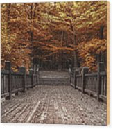 Path To The Wild Wood Wood Print