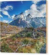 Path To Torres Del Paine Wood Print